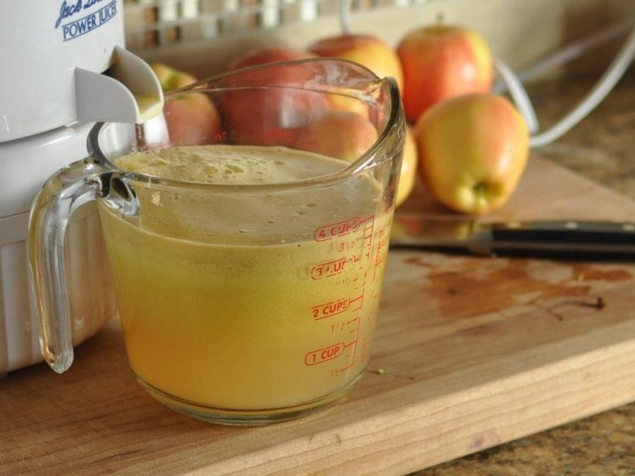 Сок из яблок без соковыжималки – полезный натуральный напиток. лучшие рецепты сока из яблок без соковыжималки