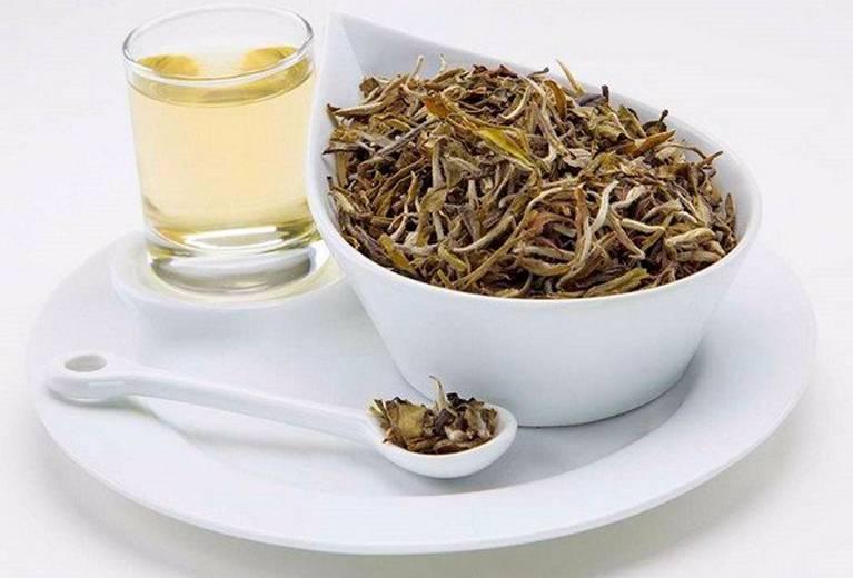 Полезные свойства китайского белого чая, сорта и способы заваривания