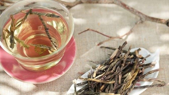 Чай кудин – как заваривать и пить