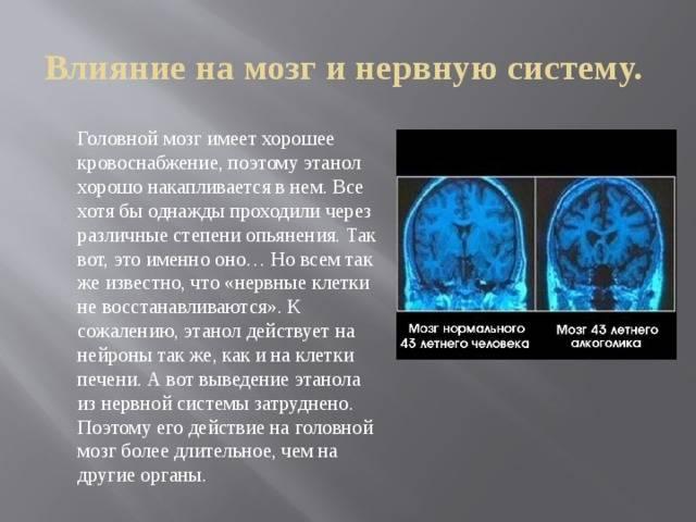 Как кофе влияет на мозг человека