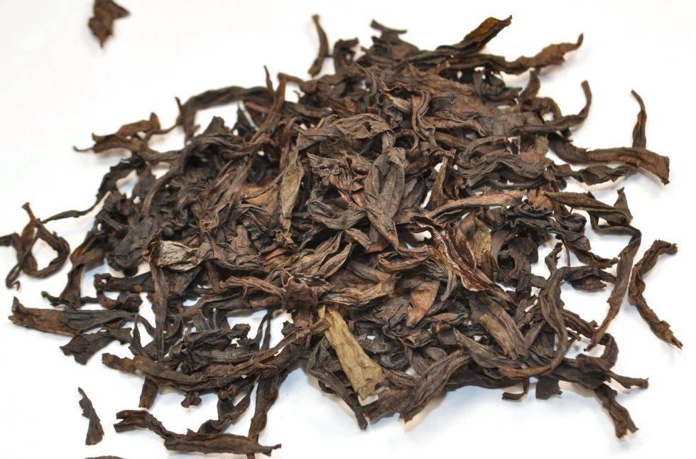 Синий чай: полезные свойства и советы экспертов