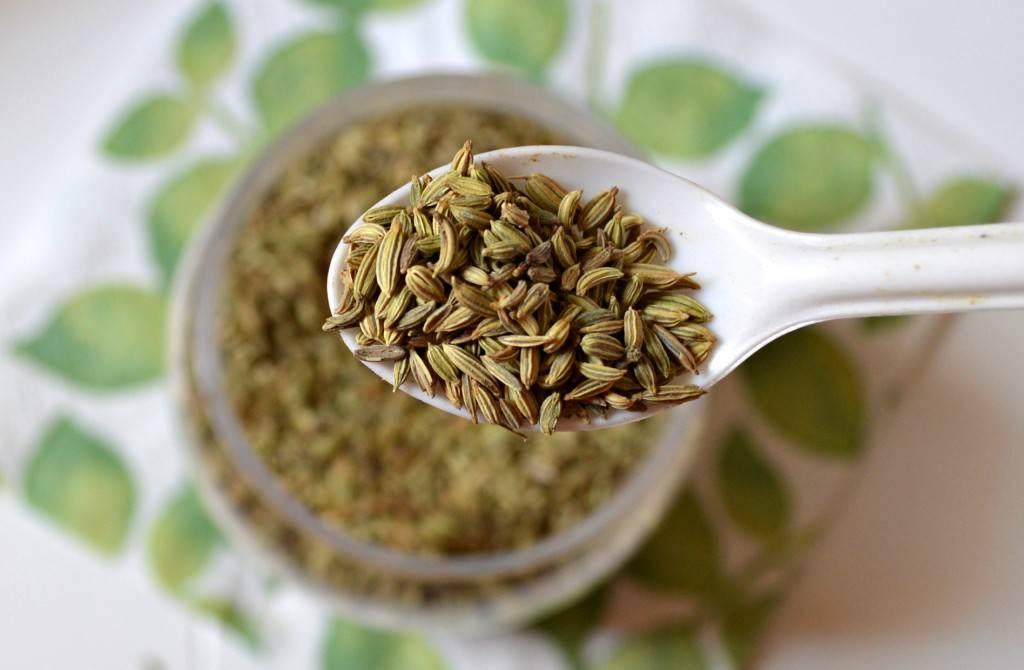 Чай с фенхелем: полезные свойства и противопоказания, рецепты
