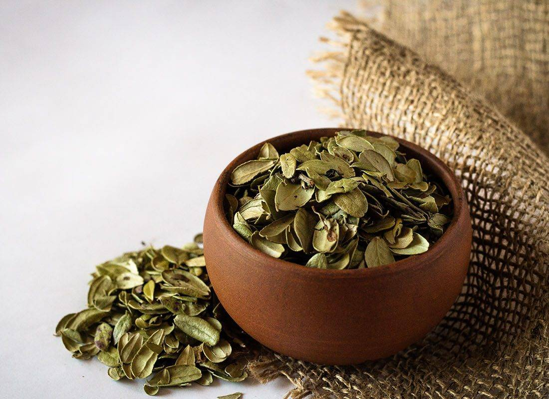 Ягоды и листья брусники при цистите: лечебные свойства