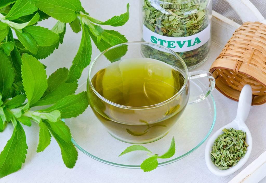 Чай с мятой польза и вред для организма женщины, мужчины и детей