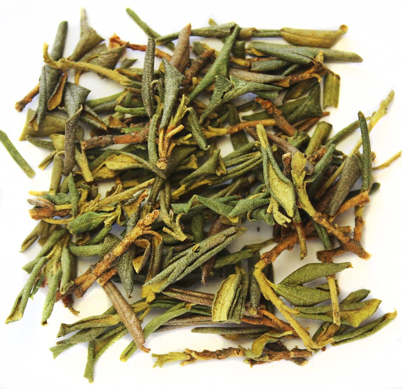 Трава саган дайля: польза и вред. свойства, противопоказания и способы применения саган-дайля.