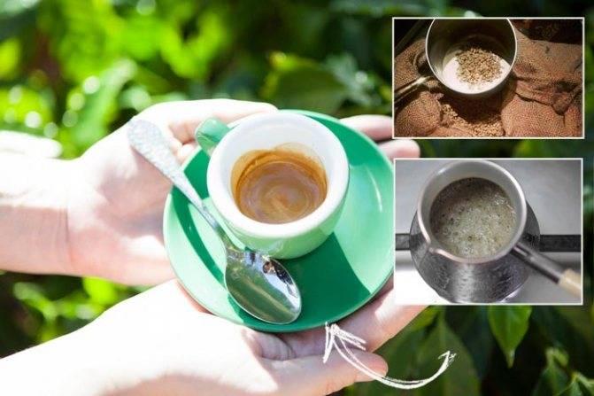 Зеленый кофе: описание, состав и свойства, действие, правила приготовления и приема, польза и вред