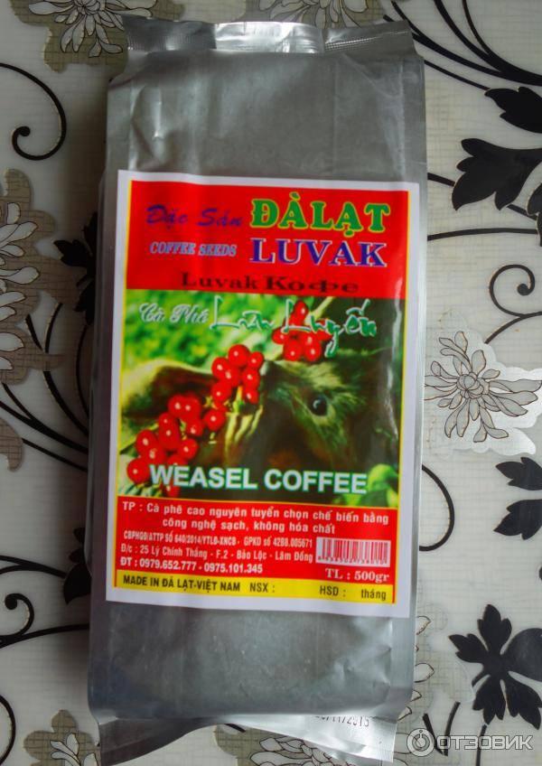 Вьетнамский кофе: как и какие сорта выращивают здесь
