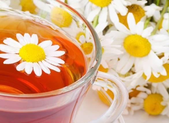 Чай из ромашки: полезные свойства и противопоказания для детей и взрослых