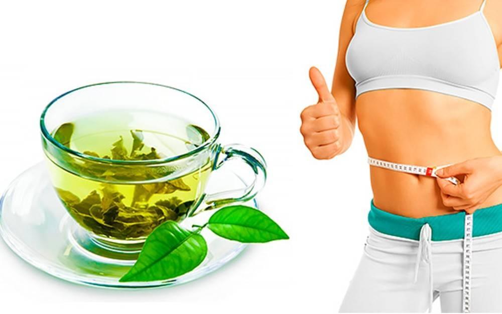 Зеленый и имбирный чай для похудения: польза, противопоказания, рецепты