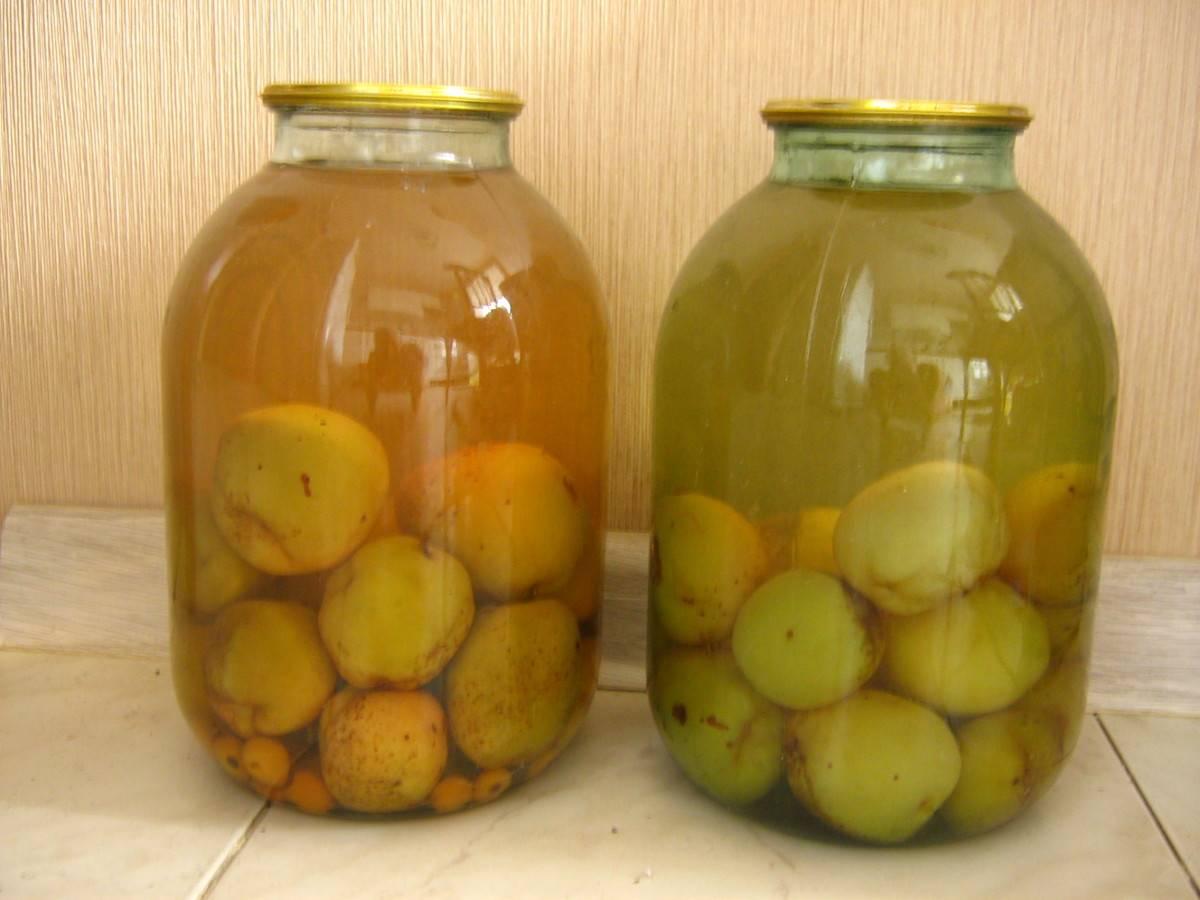 Рецепт приготовления вкусного компота из груш на зиму