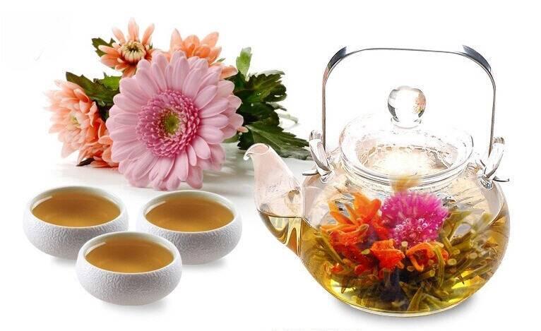 Чай с хризантемой: как заваривать, польза и вред
