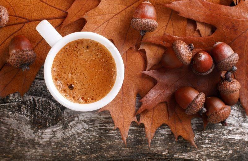 Кофе из желудей: полезные свойства и рецепты
