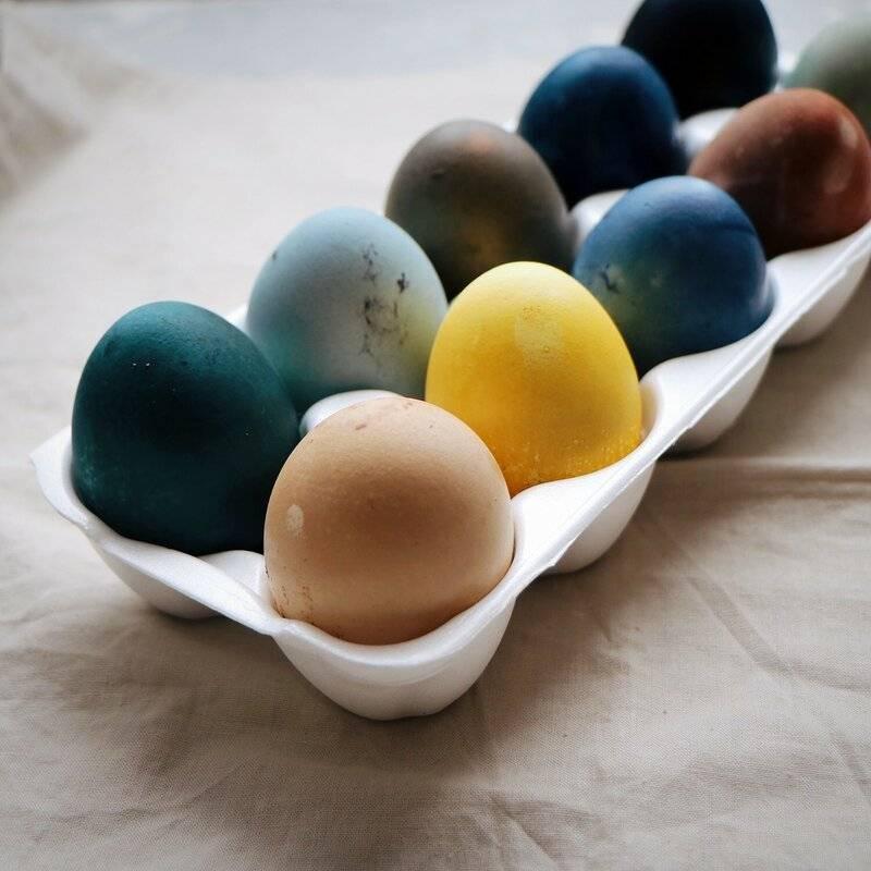 Как красиво покрасить яйца на пасху: 16 оригинальных способов