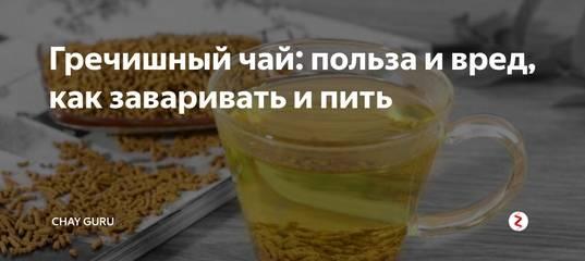 Гречишный чай — польза и вред