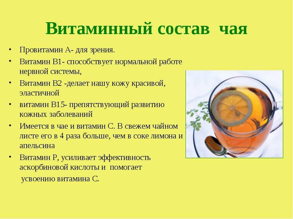 Химический состав и пищевая ценность чая