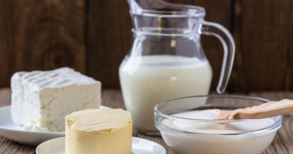 Какие молочные продукты самые полезные – научный обзор 14 видов