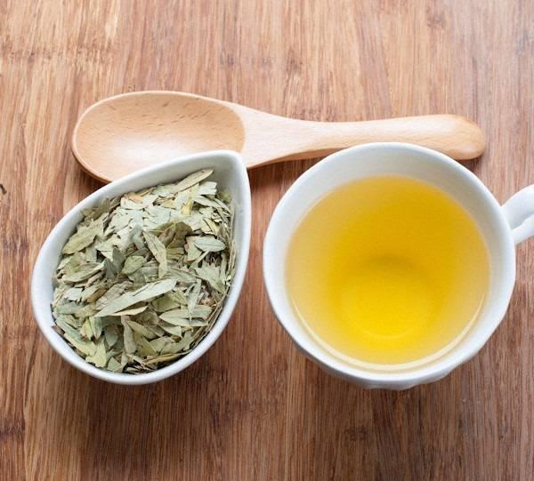 Сенна трава: от запора, для похудения, инструкции по применению, лечебные свойства