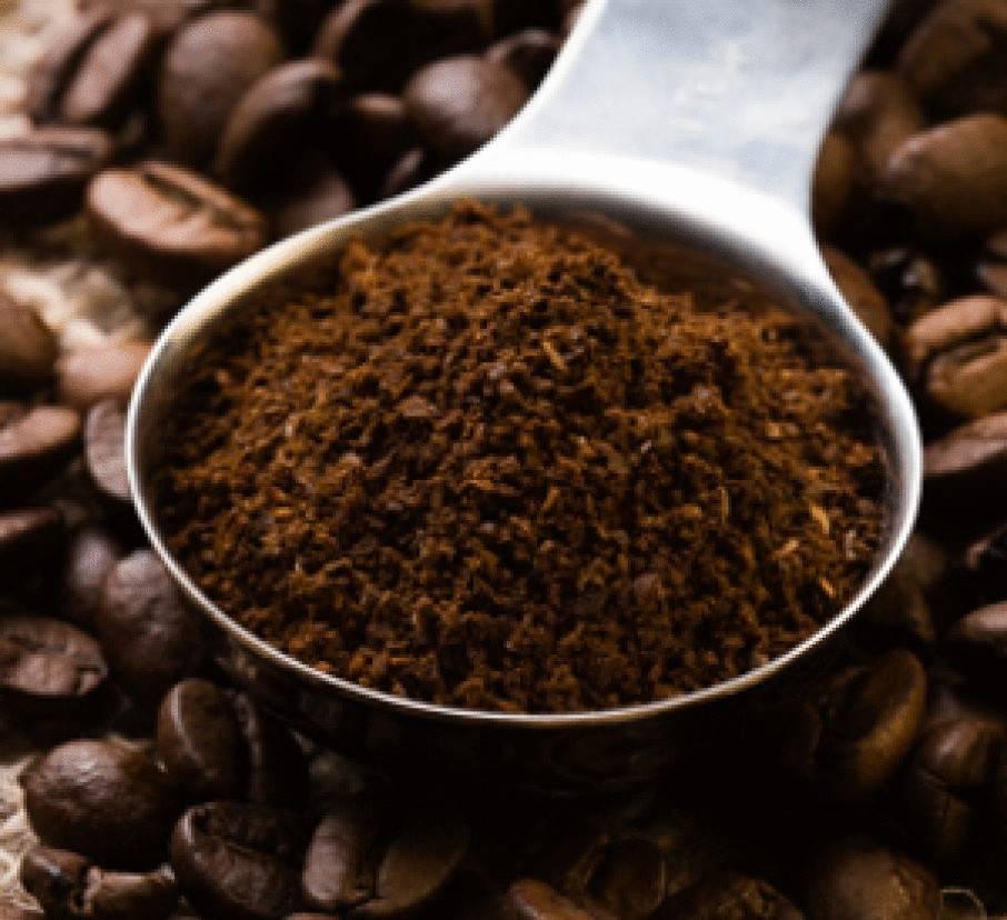 Кофейная гуща для подкормки растений в качестве удобрения