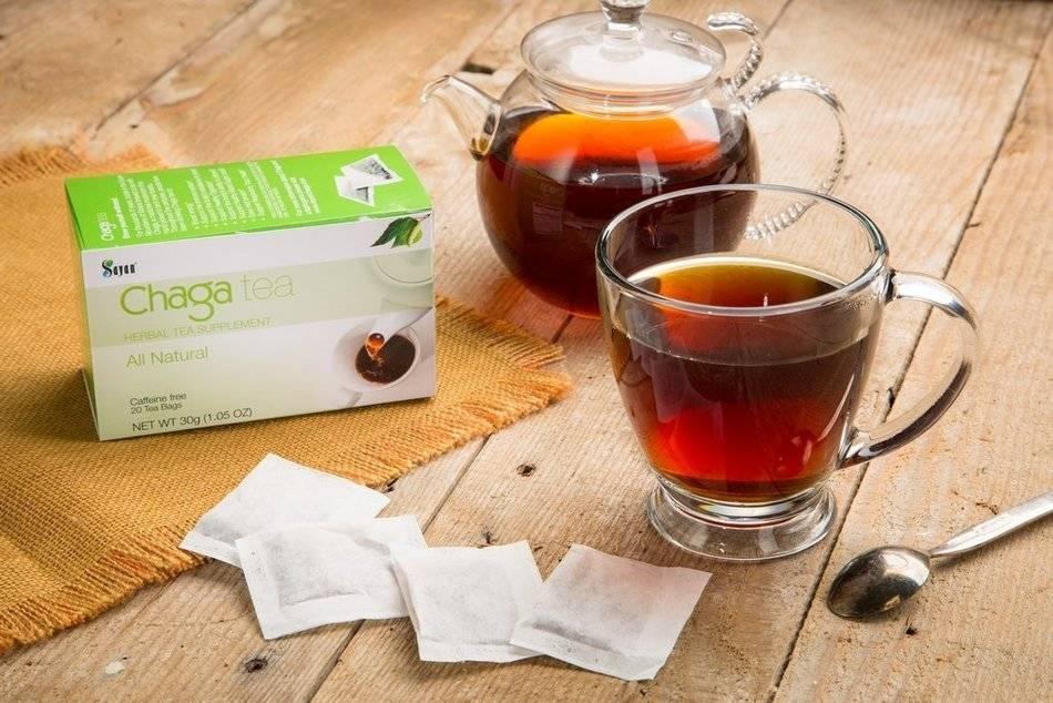 Какие полезные свойства и противопоказания чая из чаги