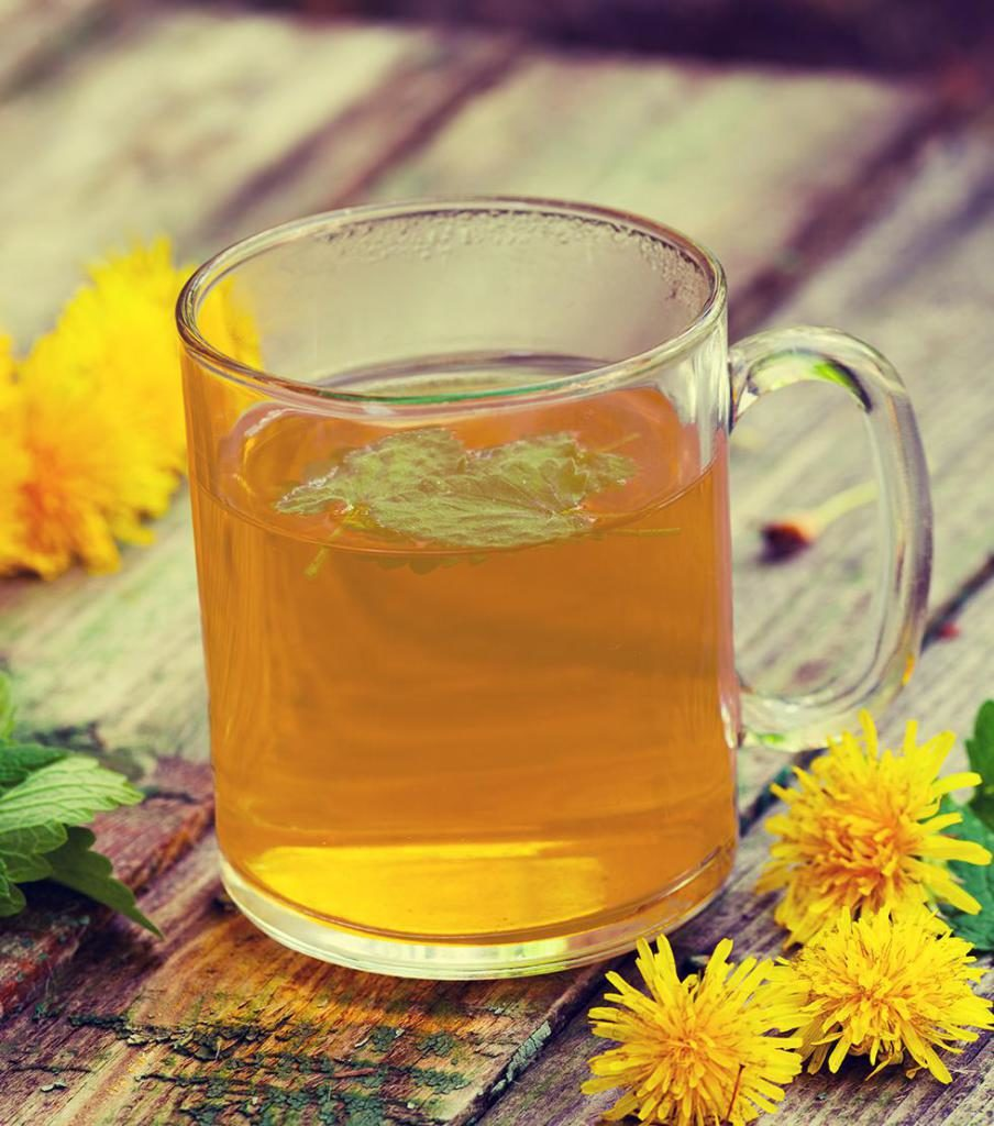 Чай из одуванчика: польза и вред, рецепты применения корней, листьев и цветков