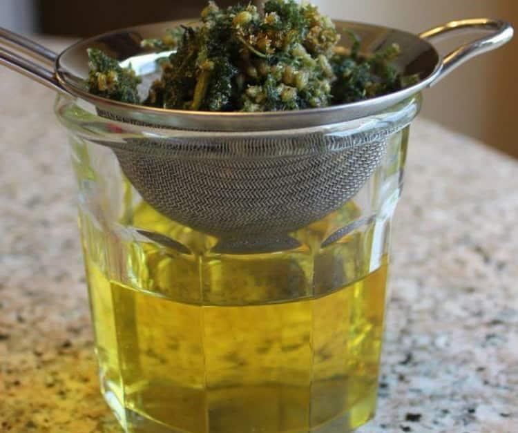 Белая редька от кашля: рецепты с медом и другими ингредиентами, как приготовить, принимать и давать взрослому и ребенку?