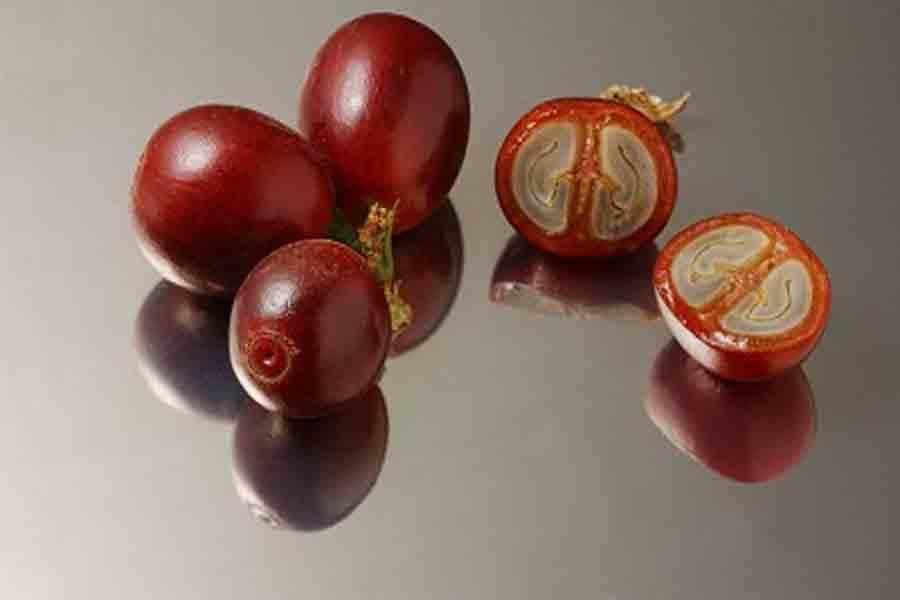 Кофейный фрукт (кофейная ягода): польза и вред