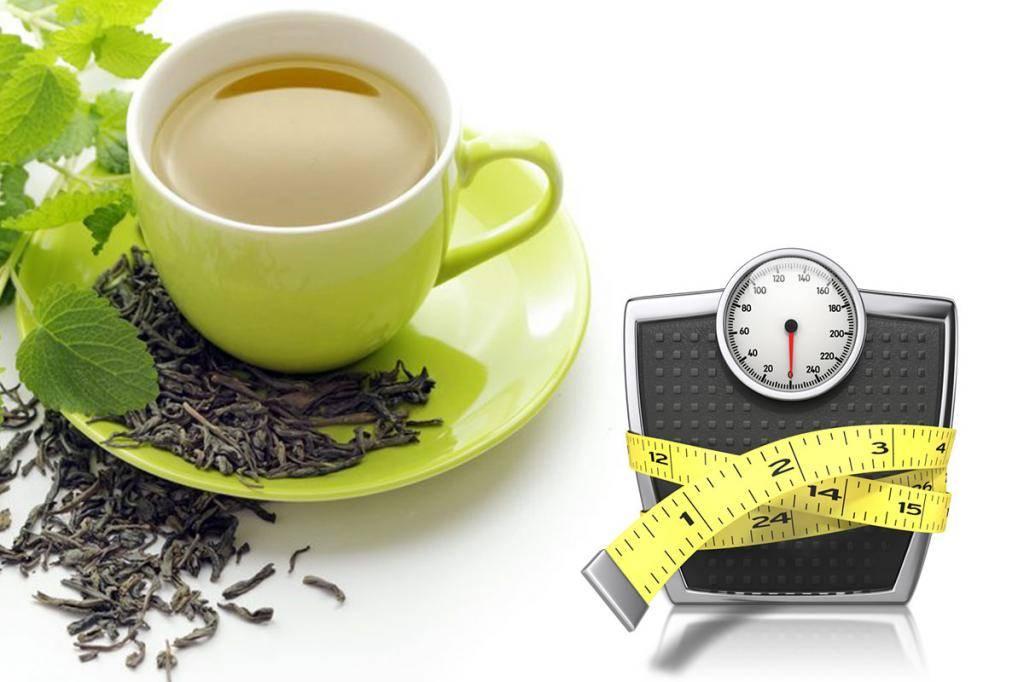 Канкура — вкусный и эффективный чай для похудения