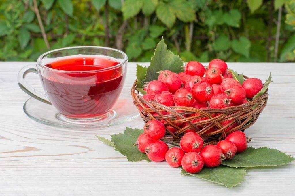 Чай с малиной – полезные свойства и рецепты приготовления