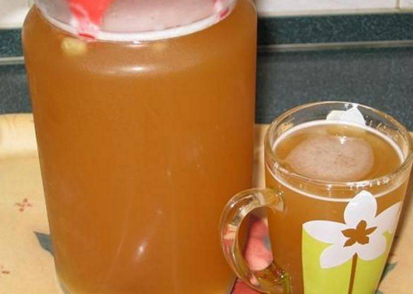 Квас из цикория жарким летним днем. рецепты в домашних условиях. цикорий и его полезные свойства. квас из цикория с лимонной кислотой