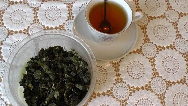 Ферментация листьев малины в домашних условиях - как ферментировать малиновый лист для чая правильно