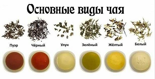 Листовой и гранулированный чай: как их делают, какой из них лучше