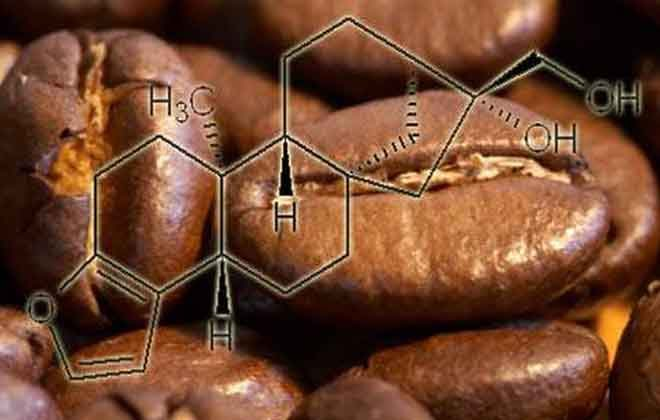 Кофе и холестерин: влияние напитка на уровень холестерина