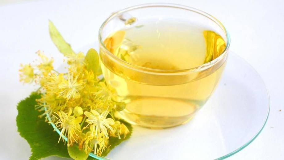 Липовый чай: как заваривать, и чем полезен