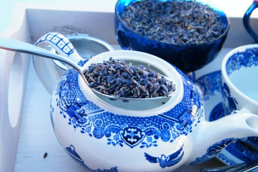 Чай с лавандой: полезные свойства и противопоказания