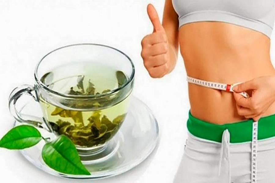 Зеленый чай для похудения: эффективность, приготовление, употребление и противопоказания