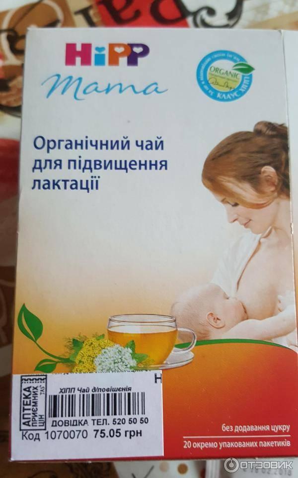 Стоит ли пить чай для улучшения лактации