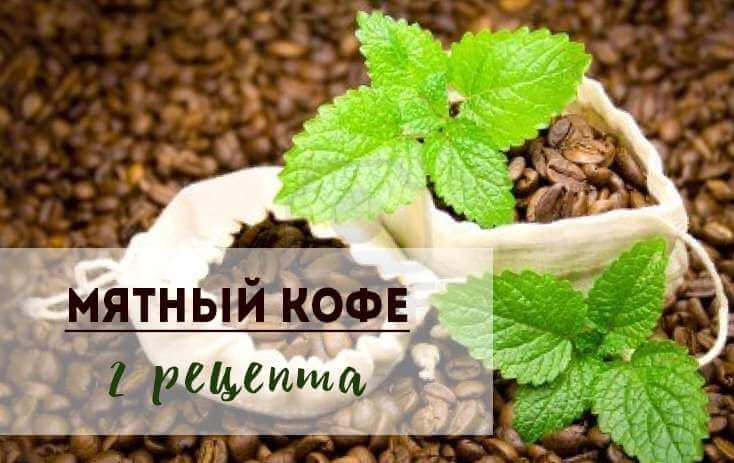Как приготовить вкусный кофе с мятой