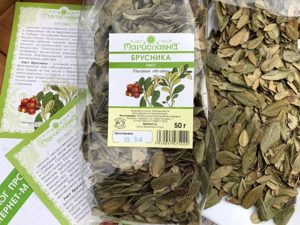 Брусничный чай, его польза, вред и рецепты приготовления