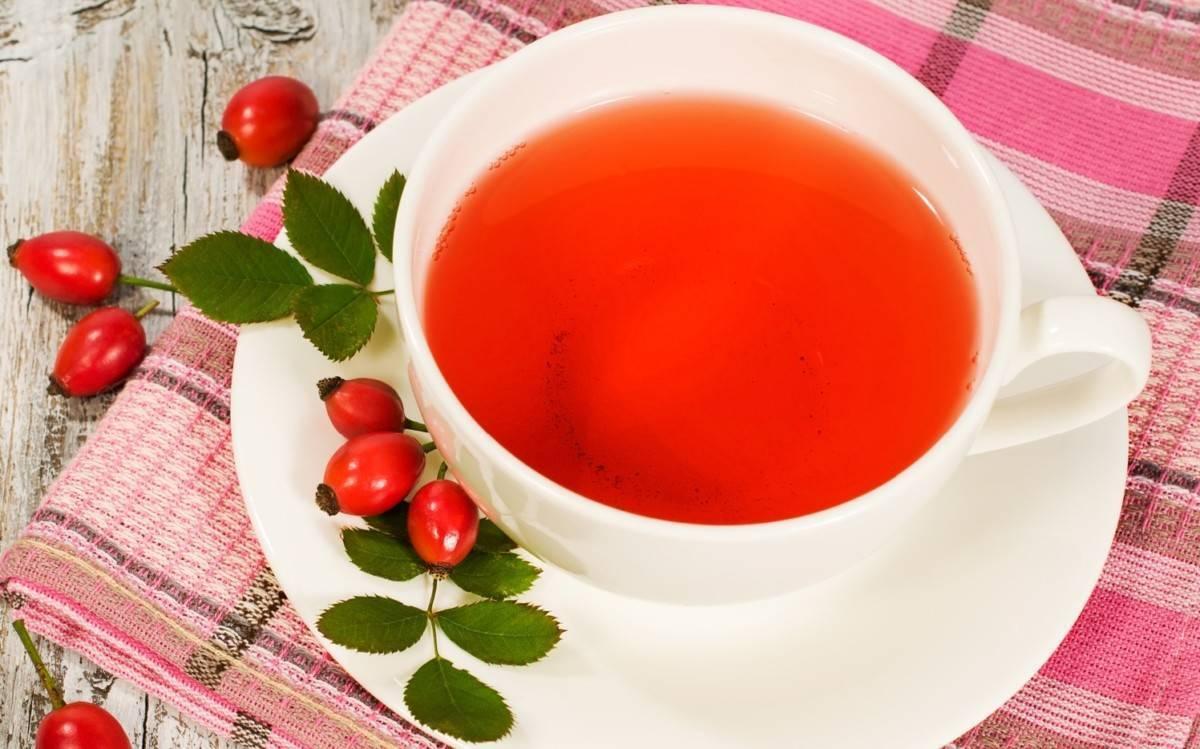 Чай с шиповником: польза и вред — 9 полезных свойств уникального чая
