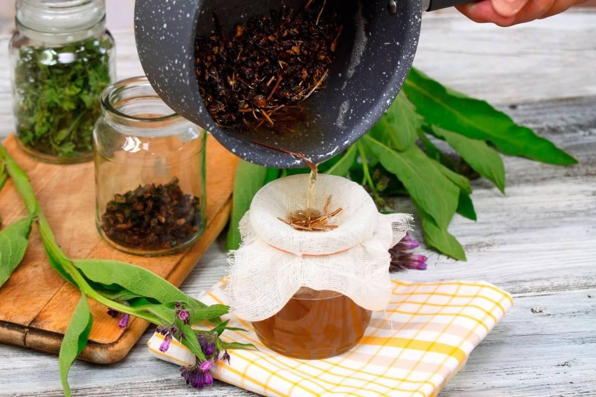 Листья хрена: польза для здоровья и противопоказания, применение в народной медицине