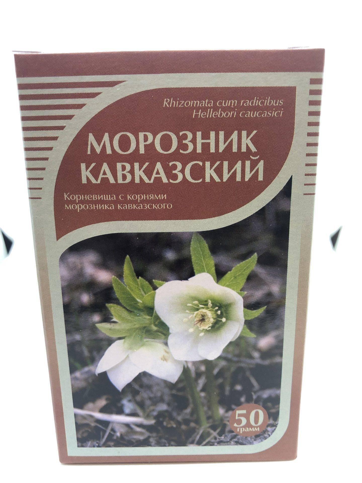 Морозник кавказский – описание, свойства, лечение
