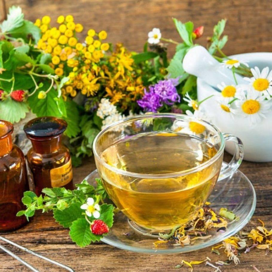 Успокоительные травяные чаи