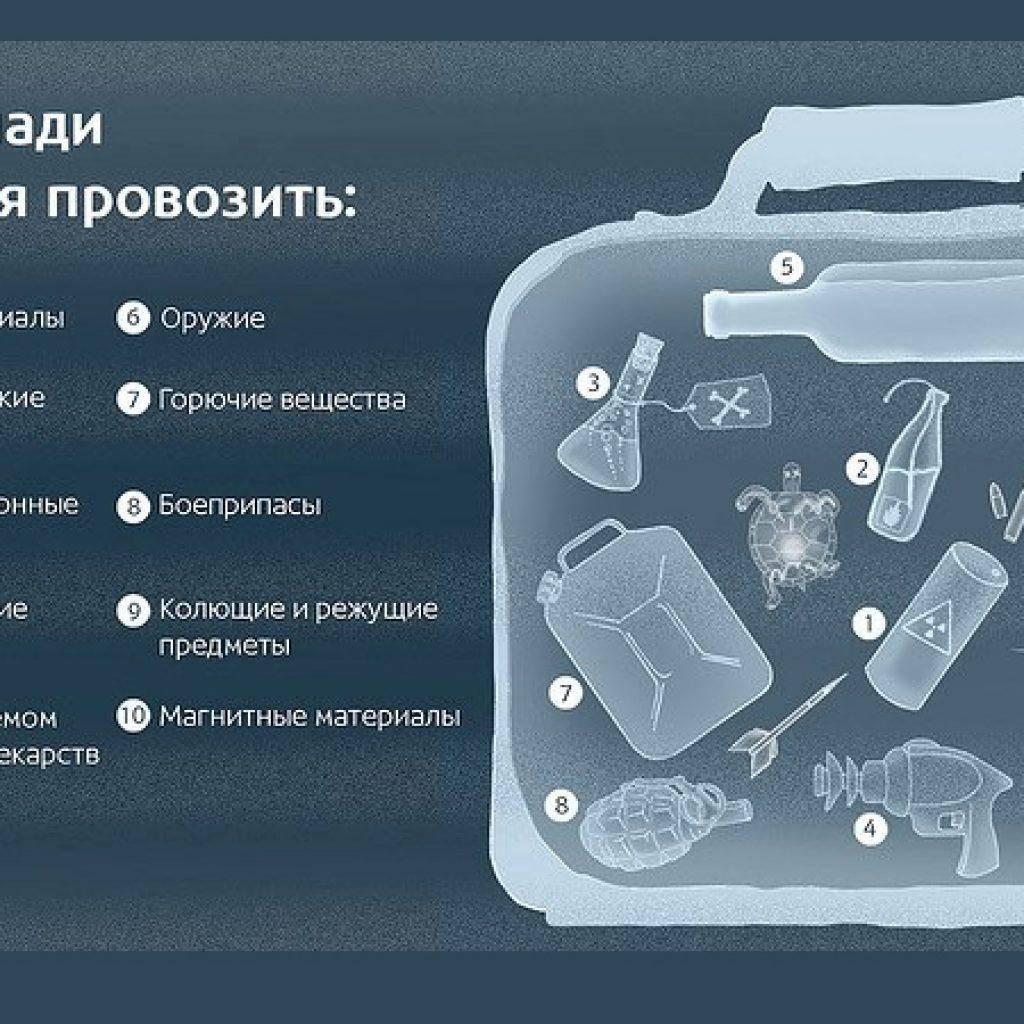 Можно ли брать еду в самолет в ручную кладь и что можно провозить в багаже
