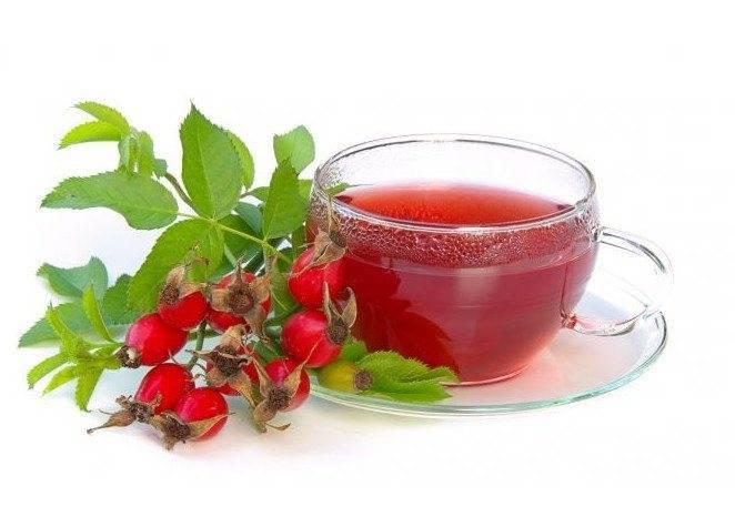 Польза чая с шиповником при гипертонии, повышенном холестерине и жировой дистрофии печени