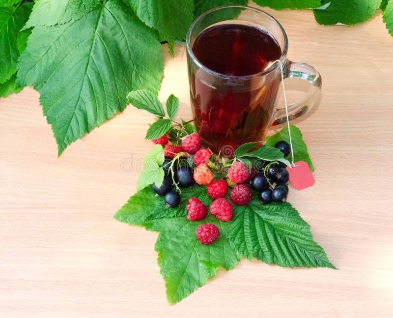 Чай из листьев смородины - польза и вред напитка