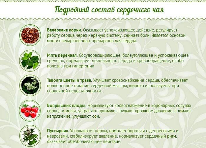 Что нужно знать про лечебные свойства и противопоказания иван-чая