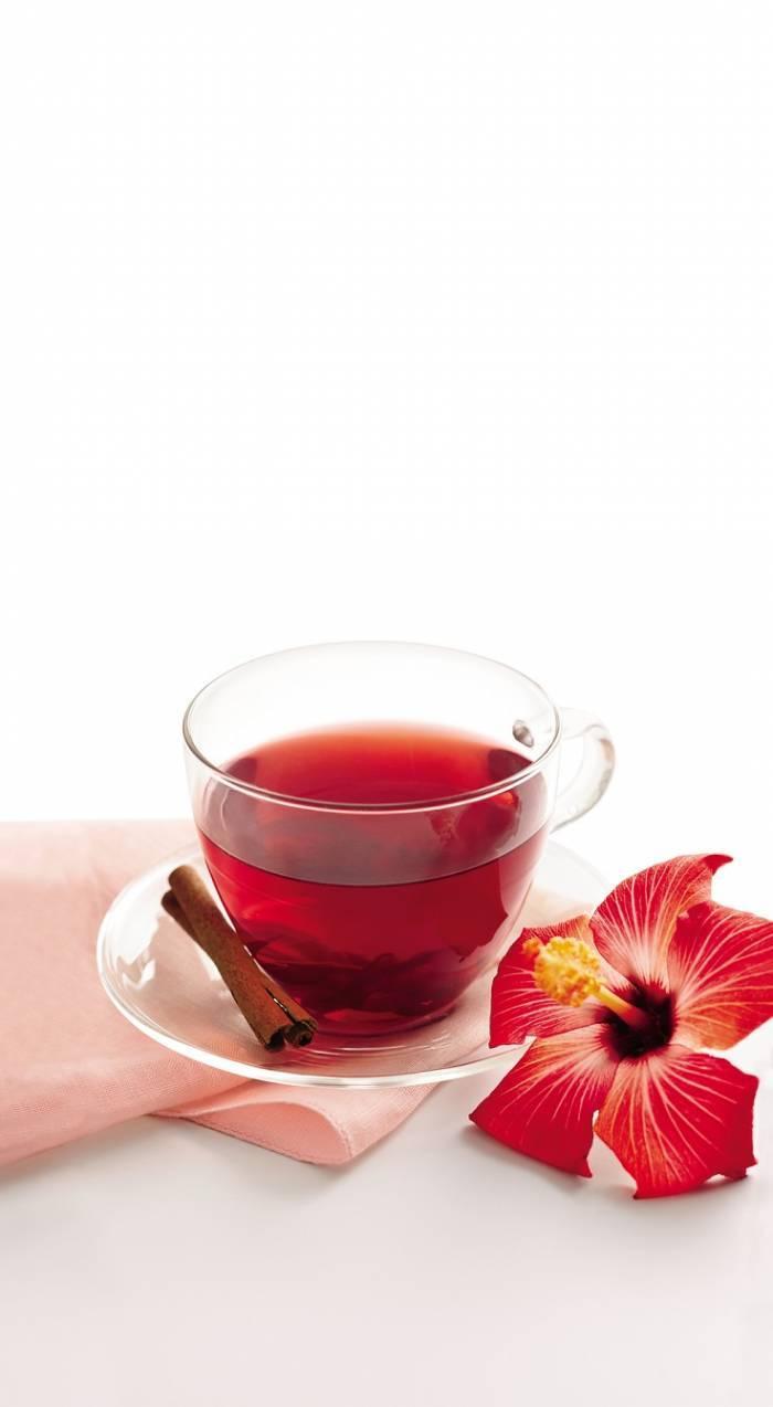 Чай из цветов гибискуса: полезные свойства и вред selo.guru — интернет портал о сельском хозяйстве