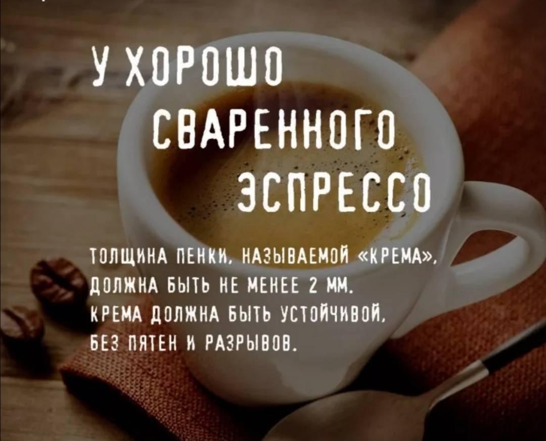 Цитаты про кофе - сборник лучших цитат