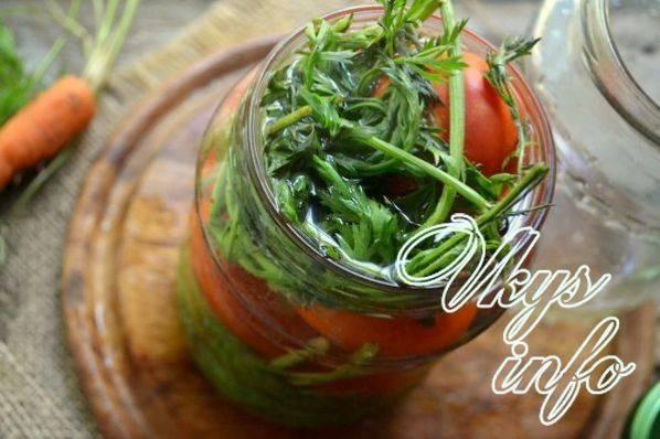 Морковная ботва: лечебные свойства, противопоказания, лекарственные, косметические и кулинарные рецепты