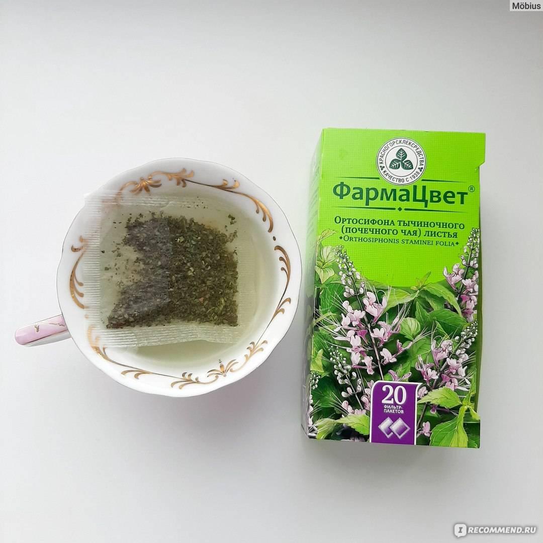 Почечный чай — полезные свойства и противопоказания, состав, применение при беременности, пиелонефрите и цистите